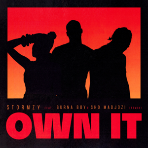 Stormzy - Own It (Remix) [feat. Burna Boy & Sho Madjozi]