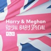 Meghan & Harry Royal Baby Special wiki, synopsis