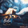 Akin Styles - Bolu artwork