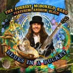 The Forrest McDonald Band - Windy City Blues (feat. Andrew Black)
