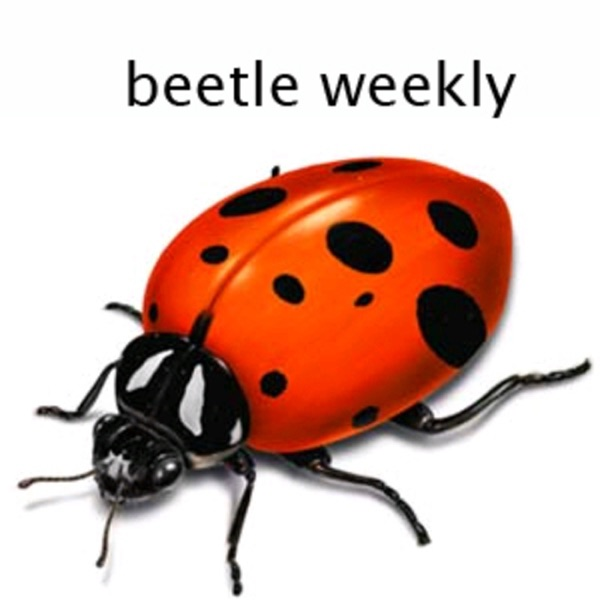 Beetle Weekly