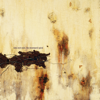 Nine Inch Nails - The Downward Spiral  artwork