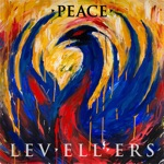 The Levellers - Food Roof Family