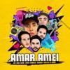 Amar Amei Remix feat G DOM Single