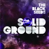 The Black Seeds - Slingshot