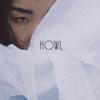 KAYE - Howl kunstwerk