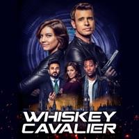 Télécharger Whiskey Cavalier, Saison 1 (VF) Episode 13