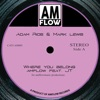 Where You Belong (feat. JT) - Single, AmFlow