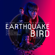 Atticus Ross, Leopold Ross & Claudia Sarne - Earthquake Bird (Original Music from the Netflix Film)