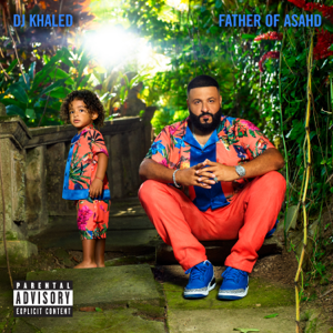 Celebrate (feat. Travis Scott & Post Malone) - DJ Khaled
