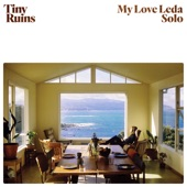 Tiny Ruins - My Love Leda (Solo)