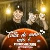 Falta de Amor Não É feat Zé Vaqueiro Single