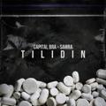 Austria Top 10 Hip-Hop/Rap Songs - Tilidin - Capital Bra & Samra
