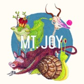 Mt. Joy - Rearrange Us