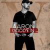 Aaron Goodvin - V artwork