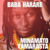 Baba Harare - The Reason Why artwork