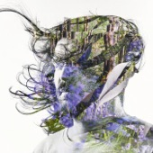 Bibio - The Art of Living