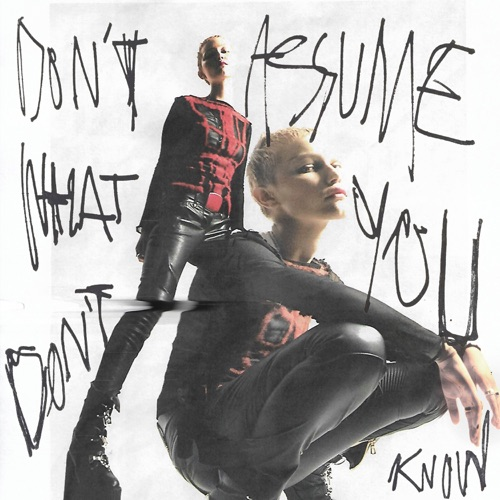 Grace VanderWaal – Don't Assume What You Don't Know – Single [iTunes Plus M4A]