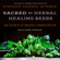 Stephen Harrod Buhner - Sacred and Herbal Healing Beers: The Secrets of Ancient Fermentation