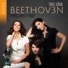 Beethoven: Complete Piano Trios - Trio Sōra