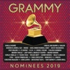 2019 GRAMMY® Nominees, Various Artists