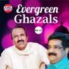 Evergreen Ghazals Vol 12