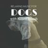 Dog Bedtime - Relaxing Music for Dogs with Nature Sounds - Songs to Keep Dogs Calm, Happy and Comfortable
