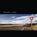 Pearl Jam - Do the Evolution