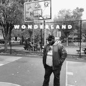 Paul Willis - Wonderland
