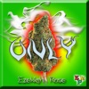 Only (feat. Ezekiah Rose)