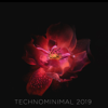 Technominimal 2019 - Various Artists