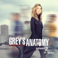Télécharger Grey's Anatomy, Saison 16 Episode 21
