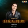 TERNOVOY - Домофон artwork