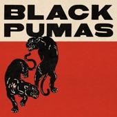 Black Pumas - Fast Car