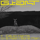 Giant - Calvin Harris, Rag'n'Bone Man