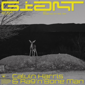 Giant - Calvin Harris, Rag'n'Bone Man Cover Art