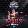 bajar descargar mp3 Adiós Amor - Los Reyes de la Bachata