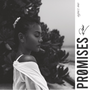 Promises (Remix)