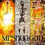 Meshuggah - Suffer in Truth