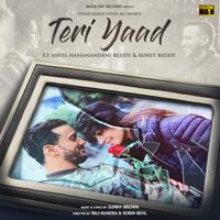 Teri Yaad (feat. Anita Hassanandani Reddy & Rohit Reddy)-Rahat Fateh Ali Khan