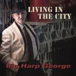 Big Harp George - Don't Talk!