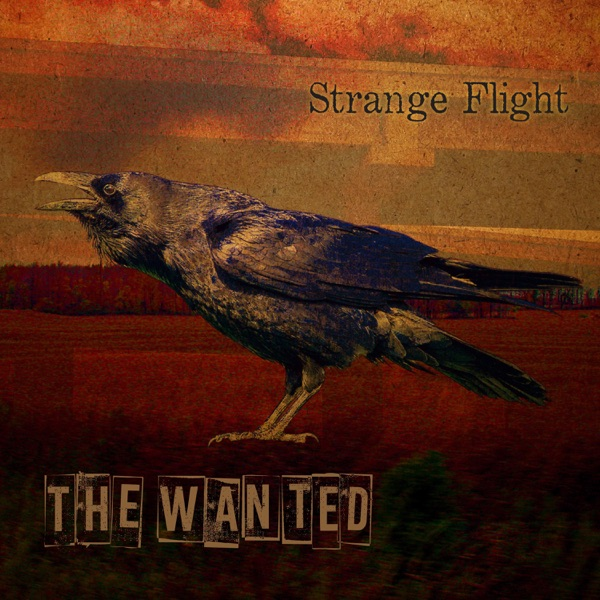 The Wanted – Strange Flight