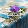 Friend Within - Xperience (Extended Mix) artwork