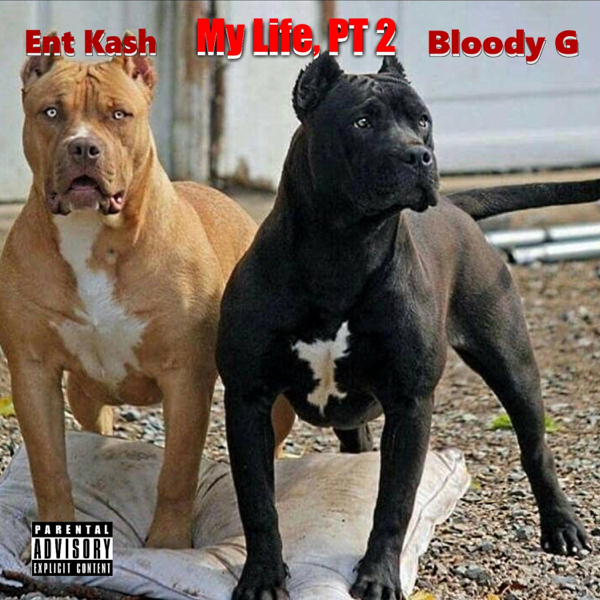 My Life (feat  Bloody G) - Single by Ent Kash