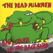 The Dead Milkmen - Laundromat Song