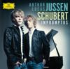 Arthur Jussen & Lucas Jussen - Schubert: Impromptus & Fantasie kunstwerk