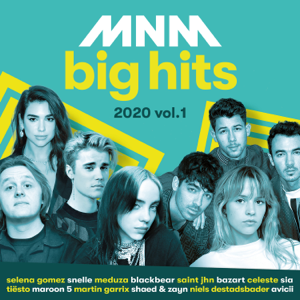 Various Artists - MNM Big Hits 2020, Vol. 1