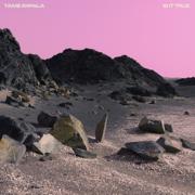 Is It True (Four Tet Remix) - Tame Impala