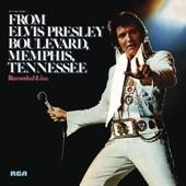 Elvis Presley(엘비스 프레슬리) - Never Again