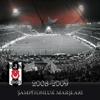 Various Artists - Anlayamaz Kimse Bu Aşkı artwork